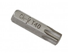 T40 Torx Bit Set 25 mm - 40 Stk in Kunststoff Box